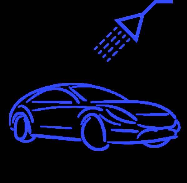 automobilio plovimas garais